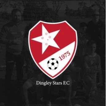 DINGLEY STARS FC SHOULDER BAG